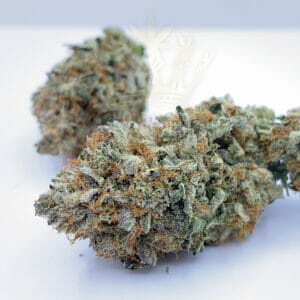 Find OG Kush strain in Toronto