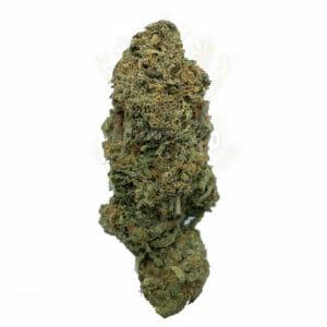 Find Weed Delivery - Gorilla Glue Strain
