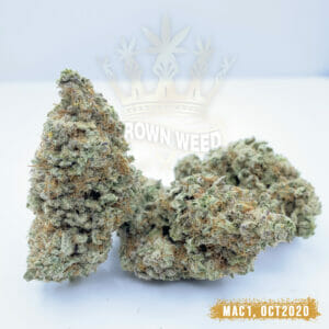 Mac 1 Miracle Alien Cookies Weed Strain
