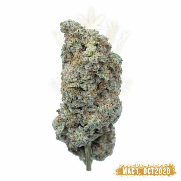 MAC 1 Weed Strain