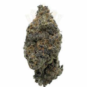 Peyote Cookies Weed Strain