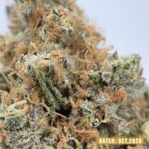 Astroboy Toronto Weed