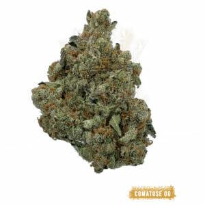 Buy Comatose OG Weed Toronto