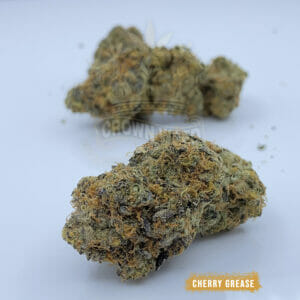 buy weed in toronto cherry grease strain