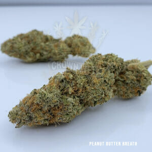 Find Peanut Butter Breath Weed for sale in toronto