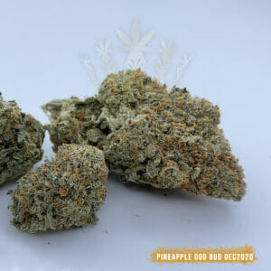 buy pineapple godbud weed in toronto