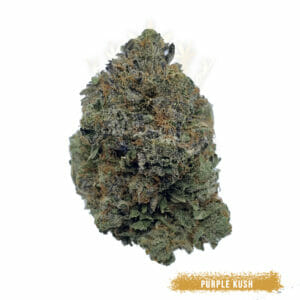 buy purple kush in toronto for delivery