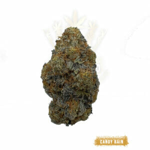 Buy Candy Rain weed strain in toronto for delivery