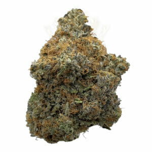 Buy comatose weed for delivery in toronto
