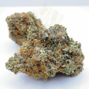 Buy comatose strain for delivery in toronto