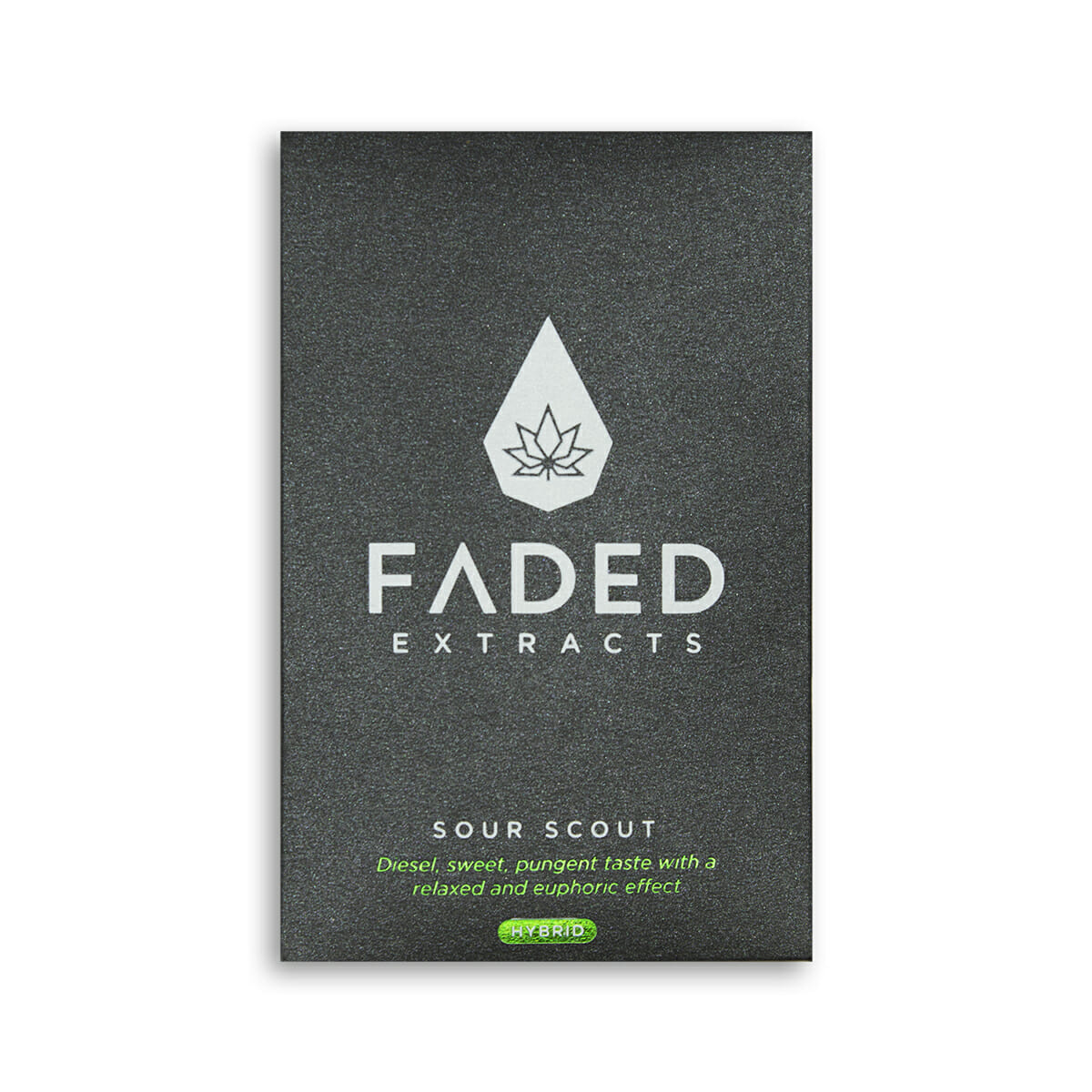 Faded shatter in toronto same day