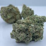 Find Gelato cannabis Strain in Toronto