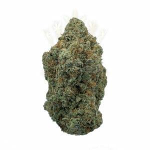Black Indica Strain Toronto Weed