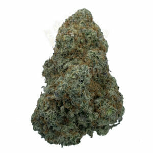 Find Sweet Jesus Strain info in Toronto for delivery