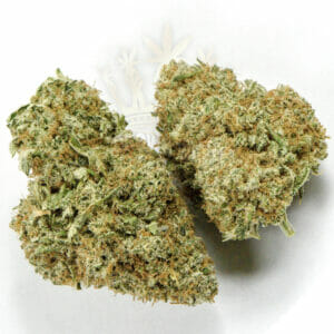 find hawaiian haze weed in toronto