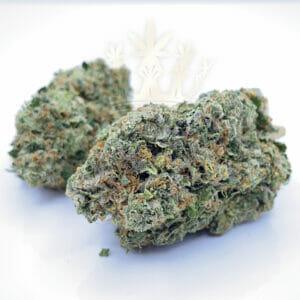 Buy MK Ultra weed in toronto