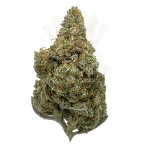 Citrus Sap Sativa Weed