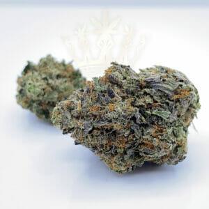buy pine tar kush strain