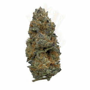 Buy Weed Toronto - Purple Dank Breath