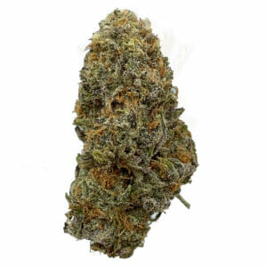 find pineapple express cannabis in scarborough