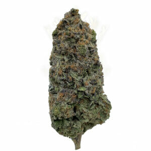Find Alien OG cannabis strain in Scarborough