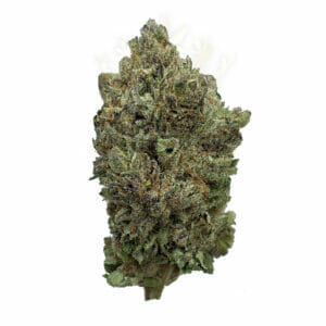 Scarborough cannabis delivery space - Purple Haze Strain