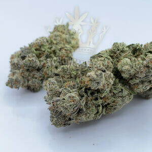 North York Same Day Weed Delivery - Blue Lights Strain
