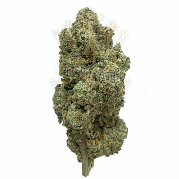 Find Runtz Weed Strain for Same Day Delivery