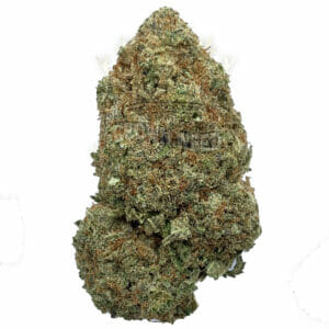 Same Day Weed Delivery in Scarborough - Triangle Mintz Strain