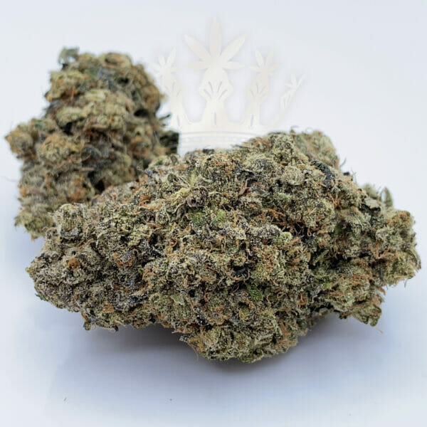 weed delivery in etobicoke same day delivery