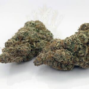 Find same day weed delivery - black candyland