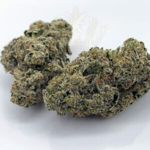 same day cannabis delivery toronto