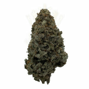 Find same day weed delivery in north york. Feat. wifi OG
