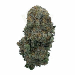 Find Dolato Cannabis Strain in Toronto for delivery