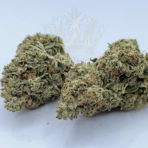 Find rockstar gas weed strain in etobicoke