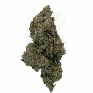 Find rockstar gas weed strain in toronto