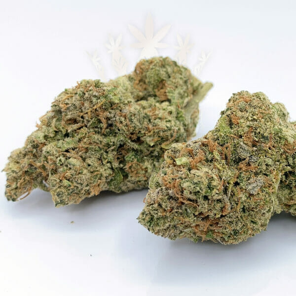 same day weed delivery etobicoke