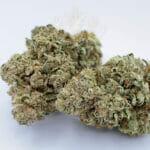 weed delivery etobicoke